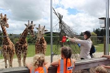 Hamilton Zoo Trip